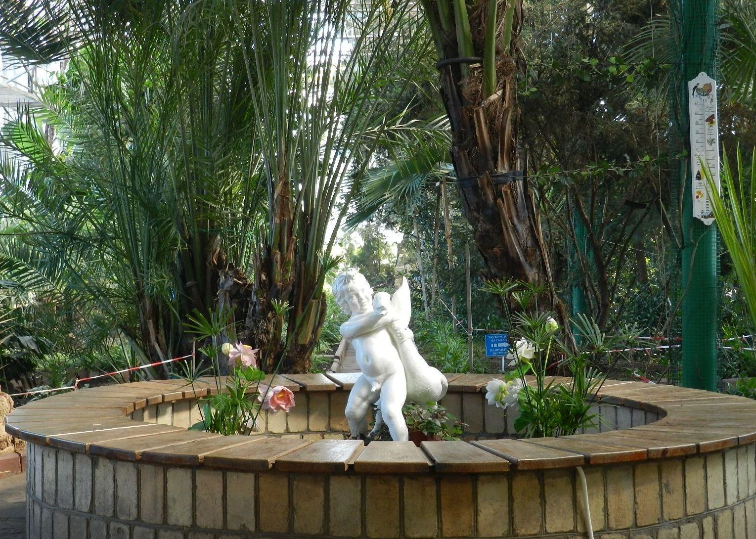 Гранат впервые зацвел в ботаническом саду Петропавловска
