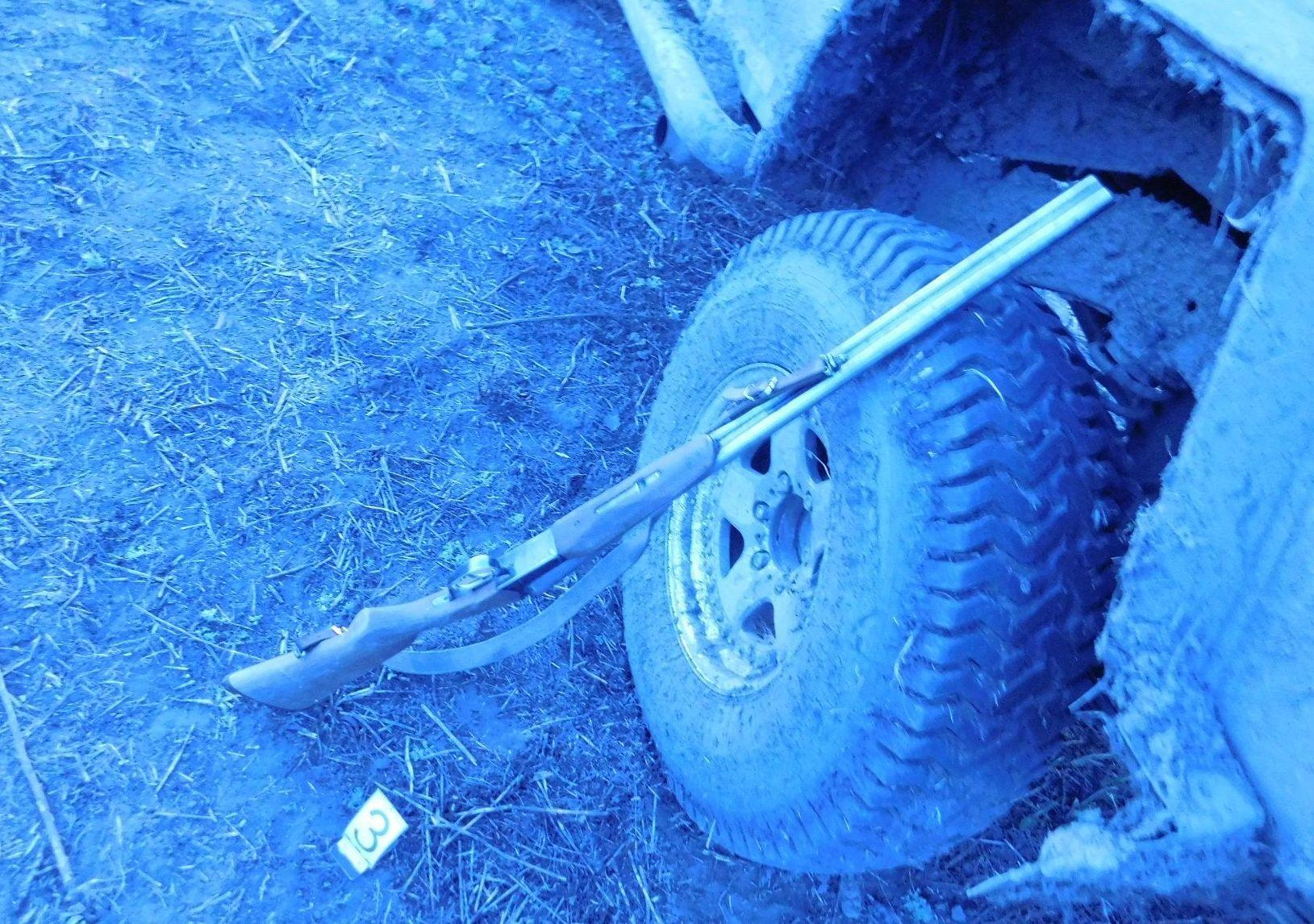 Задержаны браконьеры, застрелившие краснокнижных лебедей-кликунов