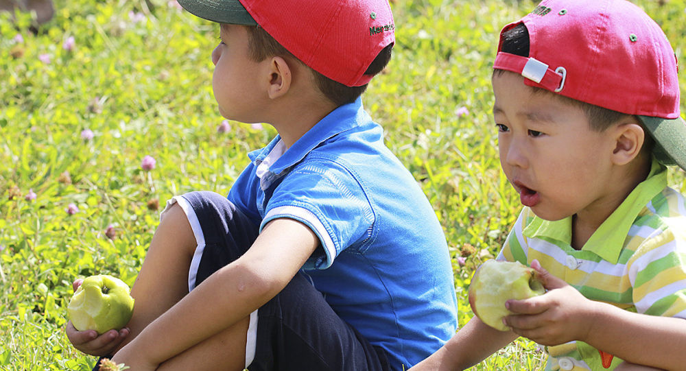 Дети едят яблоки, архивное фото