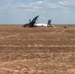 Видео с места крушения самолета в Акмолинской области