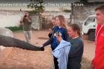 Слон напал на туристку - видео