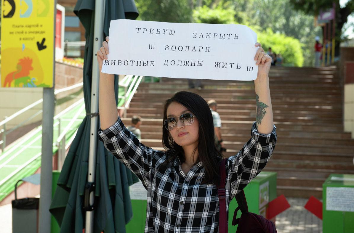 Активисты-зоозащитники. Одиночный протест против существования зоопарка