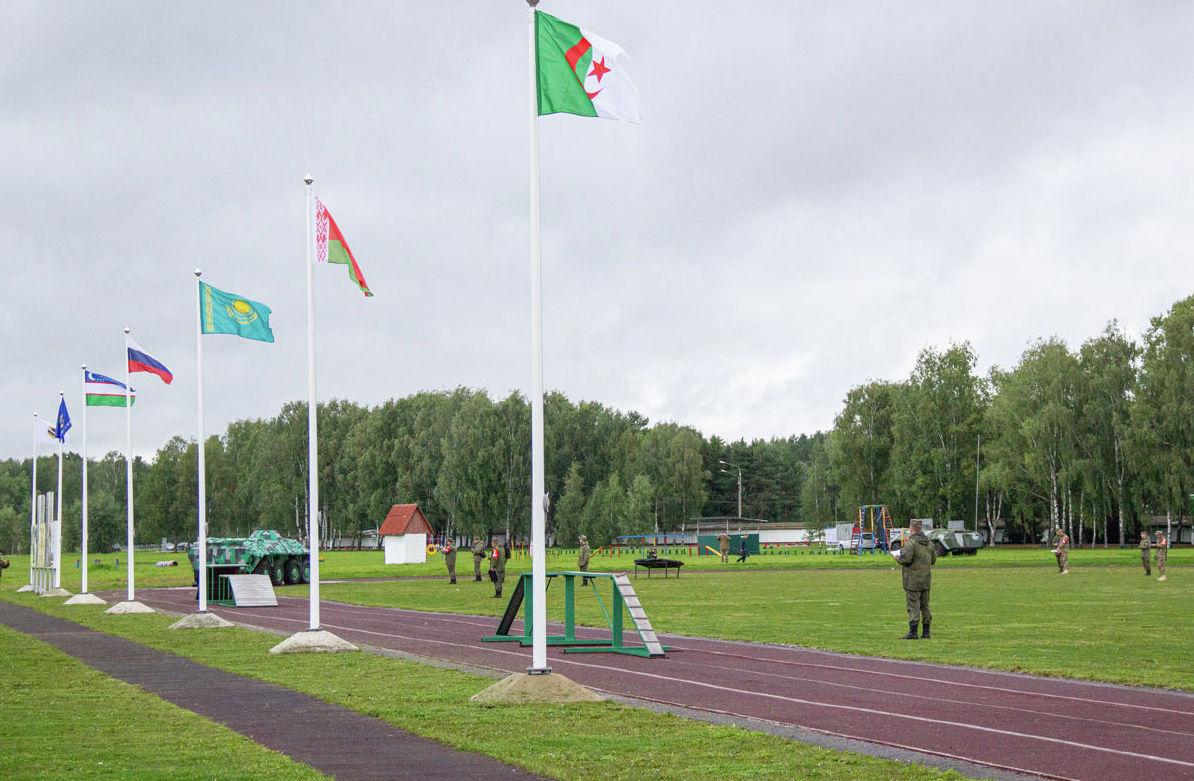 Флаги стран-участниц в рамках конкурса Верный друг АрМИ -2019