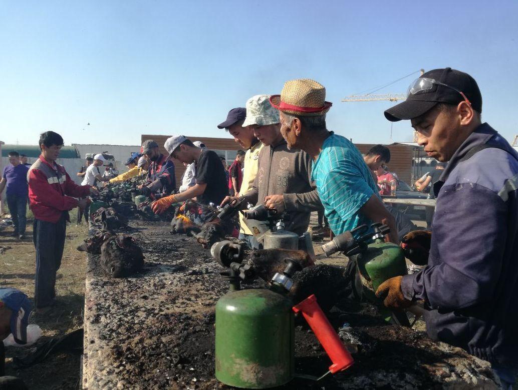 Бас үйіту қызметі 1000-1500 теңге тұрады