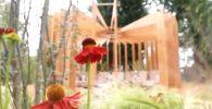 Казахский сад