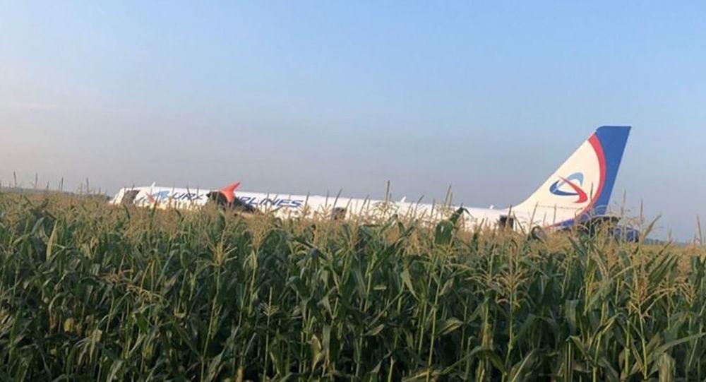Пассажирский самолёт совершил жесткую посадку в Подмосковье