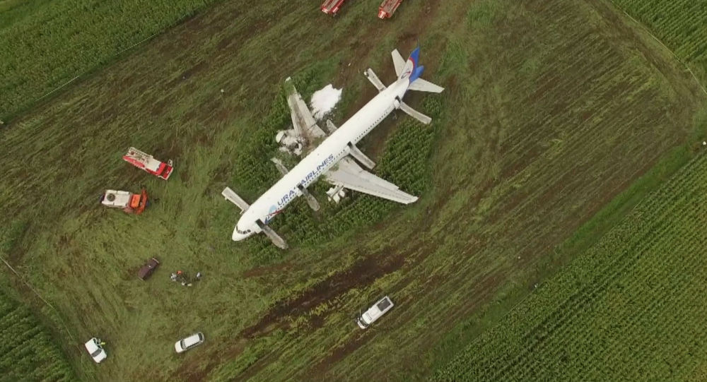 Аварийная посадка самолета Уральских авиалиний на кукурузное поле в Подмосковье, вид сверху
