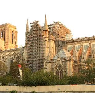 Как проходит реконструкция собора Парижской Богоматери - прямая трансляция