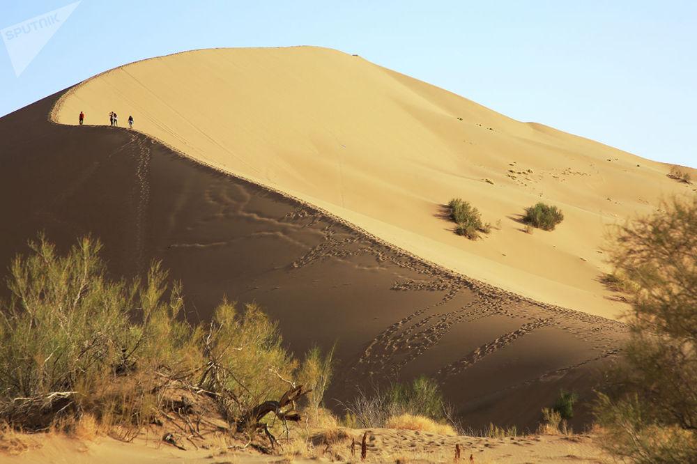 Национальный парк Алтын-Эмель, поющий бархан