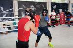 Боксеры на тренировке