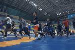 На пути к Олимпиаде: как борцы готовятся к чемпионату мира в Нур-Султане - видео