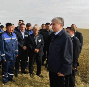 Касым-Жомарт Токаев на полях Акмолинской области встретился с работниками уборочной кампании