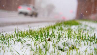 Снег в Нур-Султане