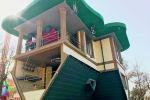 Перевернутый дом в Шымкенте