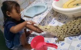 Девочка чистит зубы крокодилу