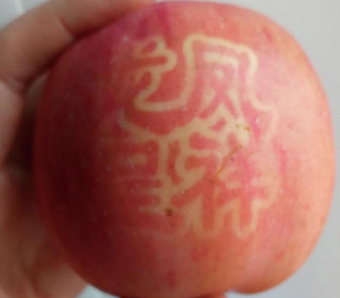Яблоки с китайскими иероглифами напугали жителей Кокшетау
