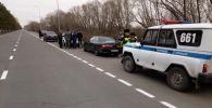 В Павлодарской области задержали свадебный кортеж с травматическим оружием, ножом и битой