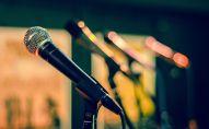 Микрофон, иллюстративті фото