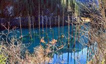 Озеро близ Алматы