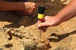 Археологические раскопки.