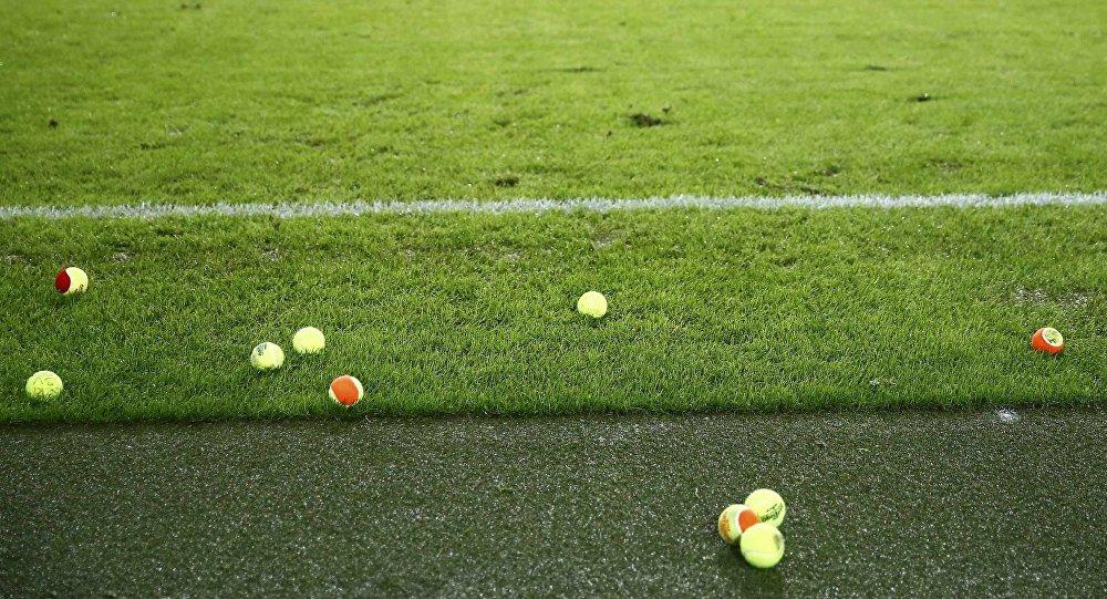 BVB-Fans werfen Tennisbälle auf Rasen