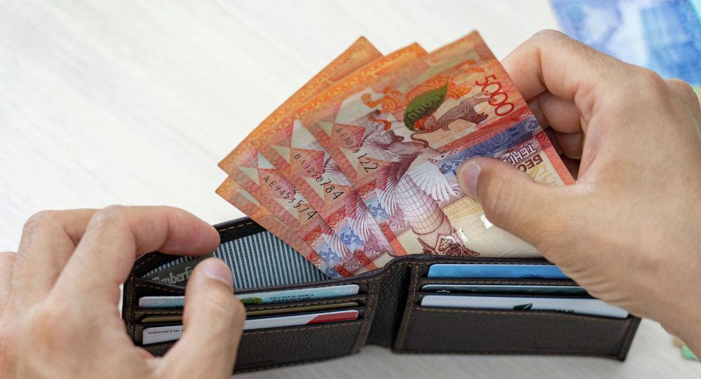 Портмоне деньги, тенге купюры