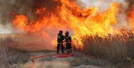 Загорание камыша в Атырауской области