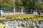 Забор располагается в центральной части города – на углу проспектов Абая и Республики