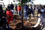 Экология объединяет: политики, звезды, священнослужители и молодежь посадили деревья в Нур-Султане