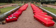 Перезахоронение солдат, погибших в годы Великой Отечественной войны, в Ленинградской области