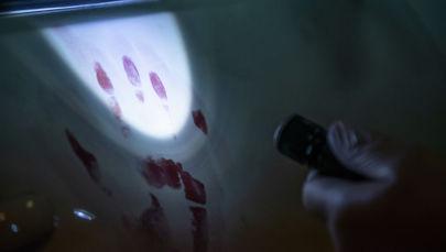 Отпечатки пальцев по-прежнему остаются наиболее верным способом выйти на след преступника