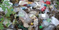 После отдыха на природе туристы часто оставляют после себя много мусора