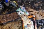 Деньги сохранились в пожаре