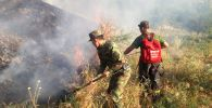 Пожар в ущелье Алма-Арасан