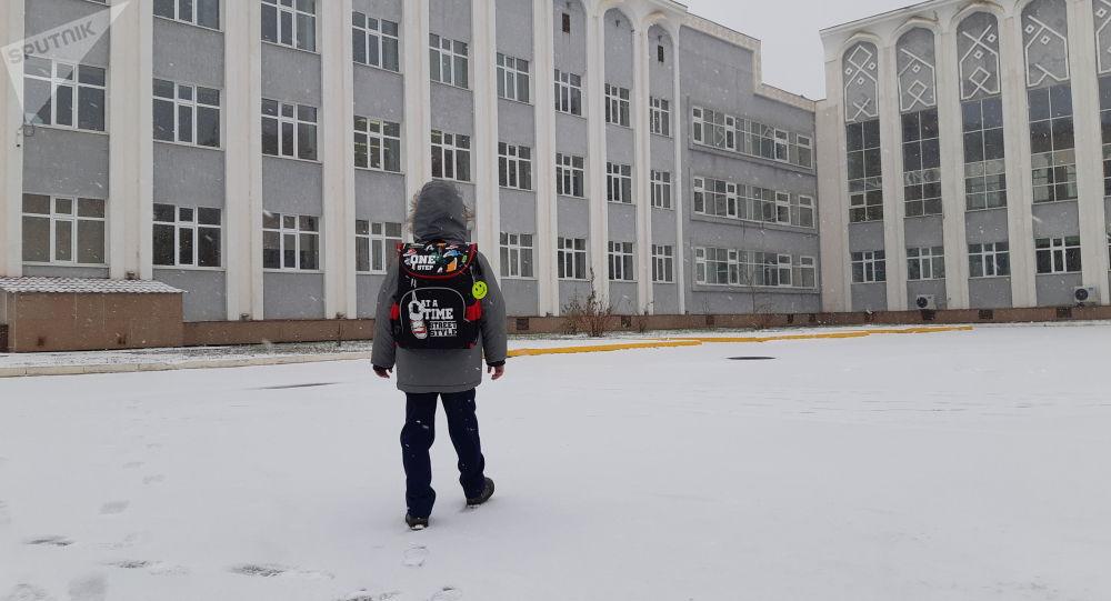 Ребенок возле школы