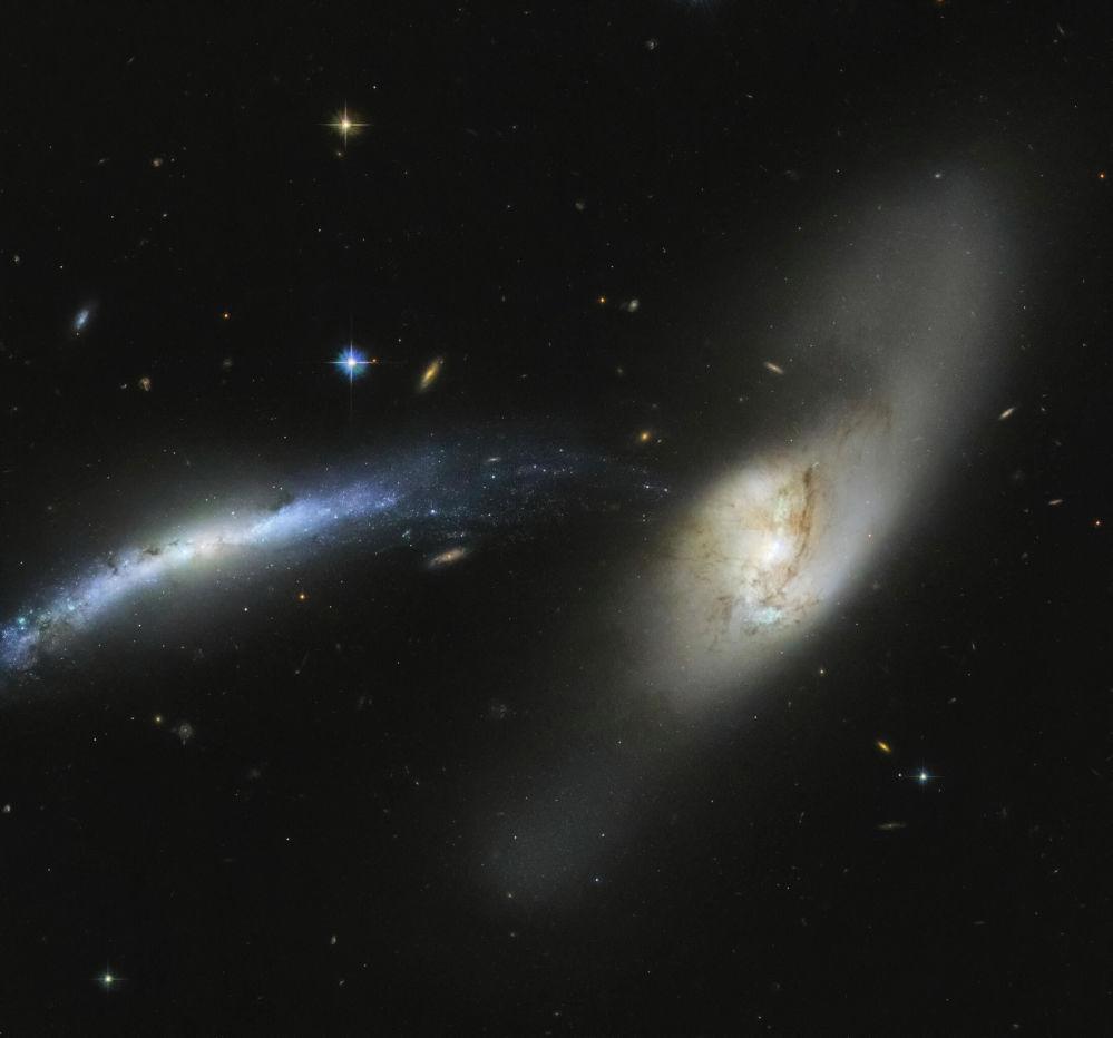 Хаббл ғарыштық телескопымен түсірілген Сілеусін шоқжұлдызындағы NGC 2799 ғаламшары. Бұл суреттерден қиялыңа қанат бітеді!