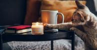 Зажигай! 7 ароматических свечей с отличным запахом и эффектом хюгге