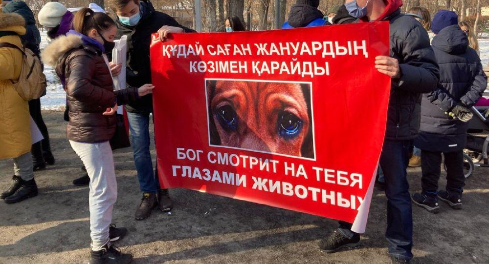 Молчаливый митинг против жестокого обращения с животными