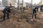 Алматинцы высадили новые краснокнижные дубы возле Sulpak - фото