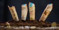 Теңге, инвестиция, ауыл шаруашылығы, иллюстративті сурет