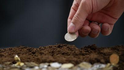 Монеты, земля, инвестиции сельское хозяйство