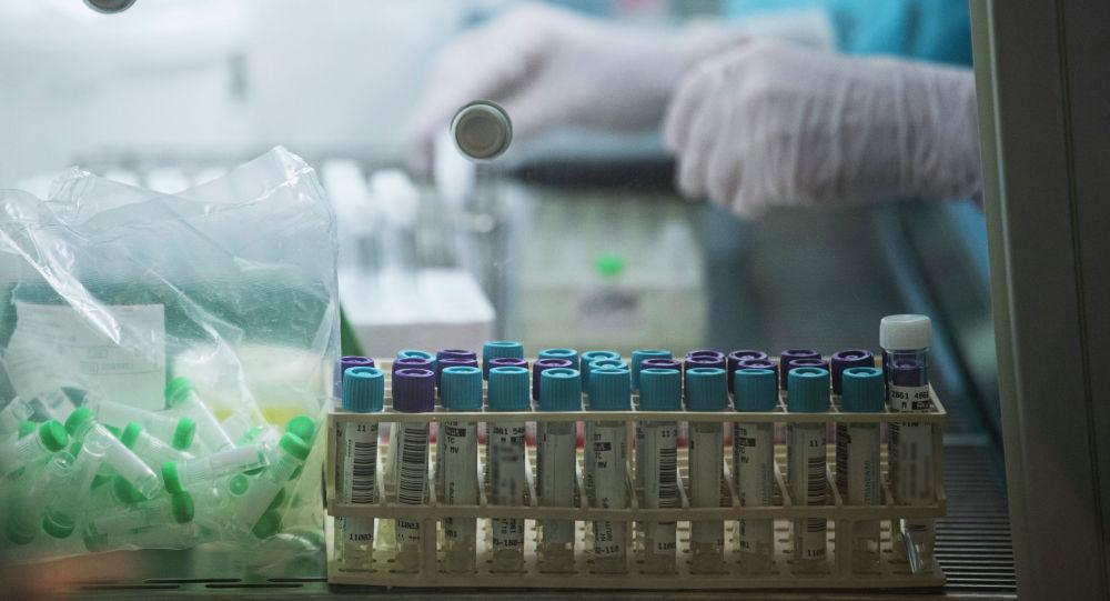 Сотрудник лаборатории работает с пробирками пцр-тестов для анализа на коронавирус