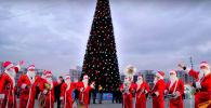 Самые красивые новогодние елки - видео