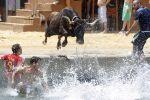 Bous a la Mar (испан тілінен аударғанда теңіздегі өгіздер) фестивалі