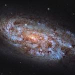 Көгершін шоқжұлдызындағы NGC 1792 галактикасының суреті