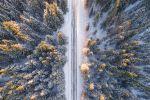Зимняя дорога в лесу