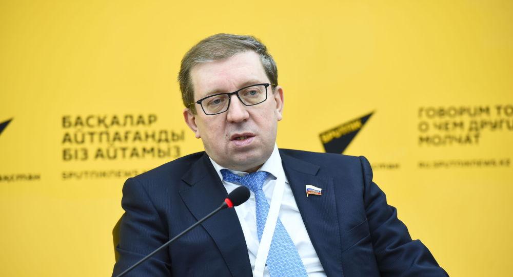 Координатор группы наблюдателей от Межпарламентской ассамблеи СНГ Алексей Майоров