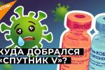 Спутник V добрался до Африки. Почему российской вакцине доверяют? - видео