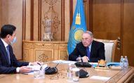 Назарбаев Алтай Көлгіновті қабылдады