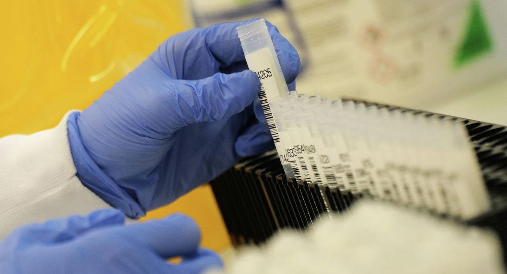 Сотрудник лаборатории работает с пробирками, в которых содержатся положительные пробы на коронавирус
